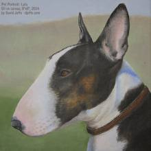 Pet Portrait Lulu - Oil on Canvas 8x8 - David Joffe - 2014.jpg